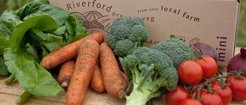 Riverford Organic Farms – A Review
