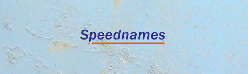 Speednames Domain Registrar – they charge for Everything